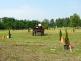 VII. Kettesfogathajtó Verseny - 2011. augusztus 20.